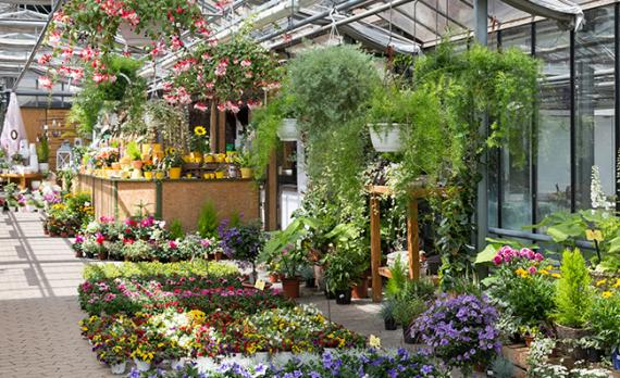 Art floral Aix Les-Milles
